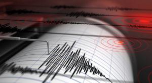 Analisi non lineari ad elementi finiti per la previsione della risposta delle strutture soggette ad azione sismica CTE